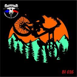 detaliu biciclete